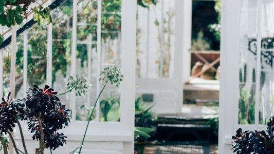 tuin – Doble lemke